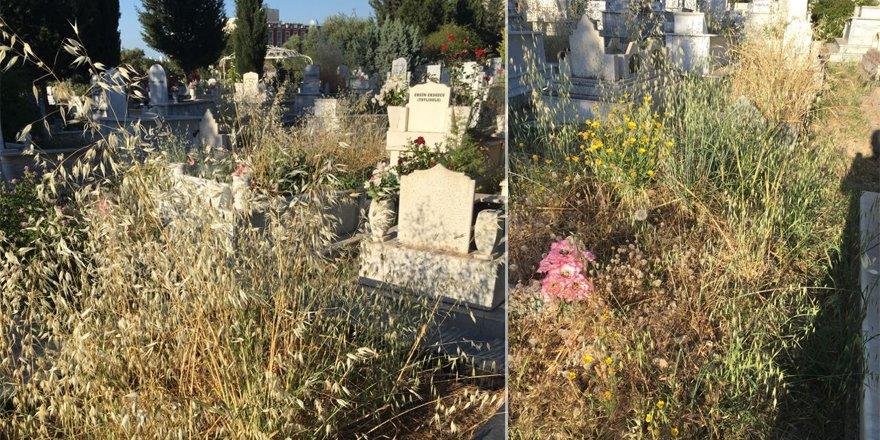 Karaoğlanoğlu Mezarlığı unutuldu