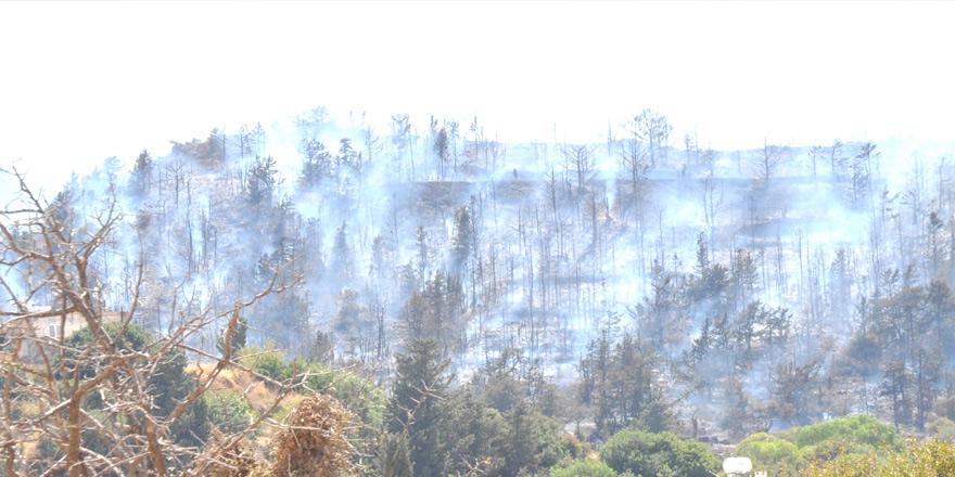 """Kurumlar arasında yangın polemiği: """"Yangın elektrik hatları nedeniyle çıkmadı"""""""