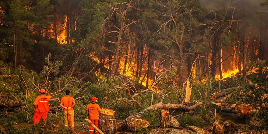 Türkiye'deki orman yangınlarıyla mücadele sürüyor