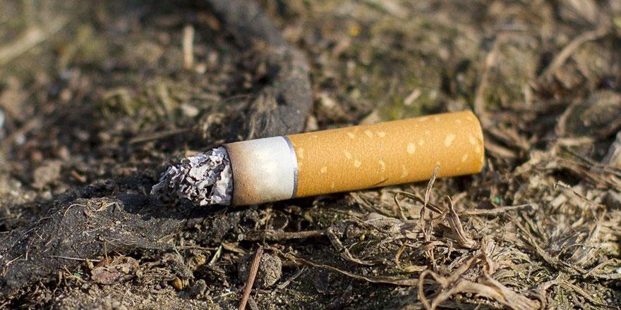 Yangınların başlıca çıkış nedeni sigara izmariti