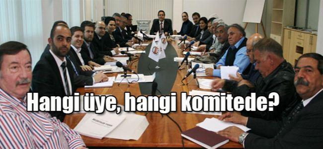 LTBde 15 komite görev başında