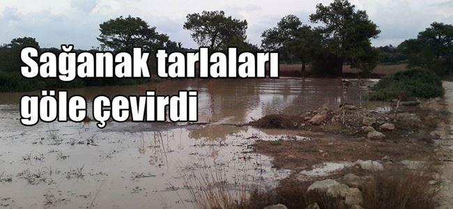 Ülkenin doğusu yağmura teslim