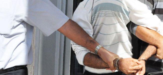 Sirkata toplam 2 yıl hapis cezası…