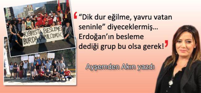 Erdoğan'a 'yavru vatan' desteği!