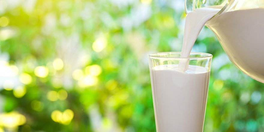 Süt haftası nedeniyle etkinlikler düzenlenecek
