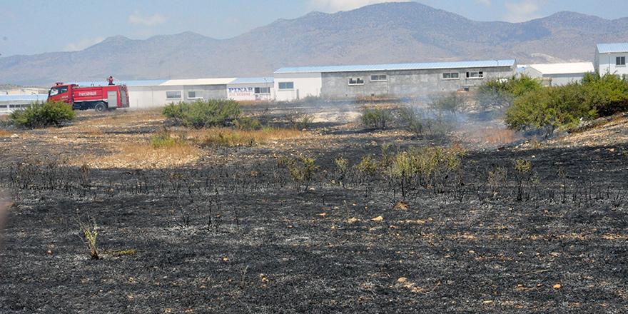 Kıvılcım, kül etti... 7 dönüm arazi yandı