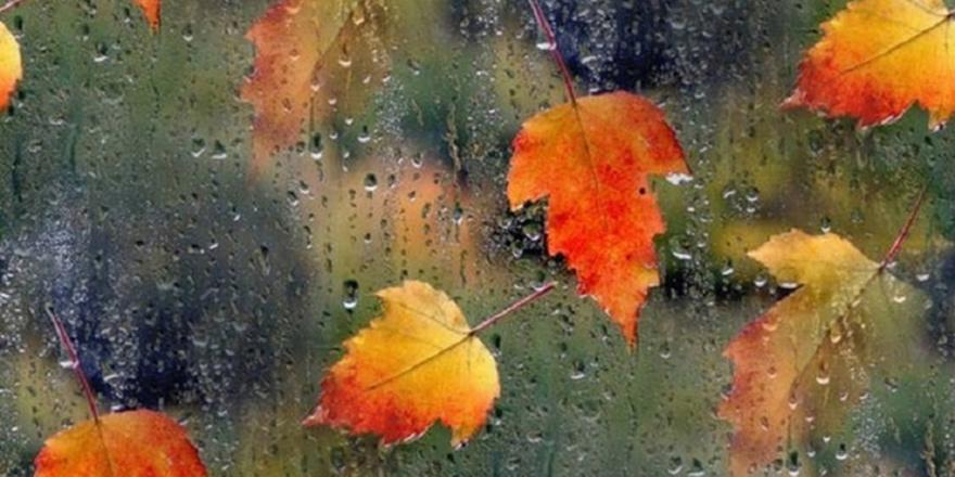 Mevsiminde yaşa hayatı!