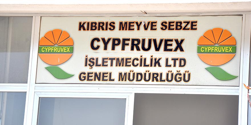 """Cypfruvex: """"Elektriğimiz kasıtlı olarak kesildi, zarara uğradık, dava açacağız"""""""