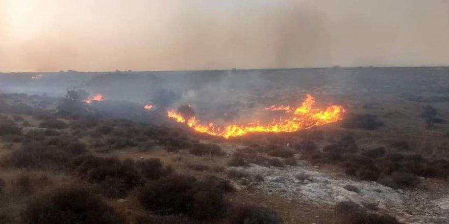 Akdoğan'da arazi yangını