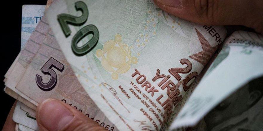 Türk Lirası rekor düşük seviyesinde