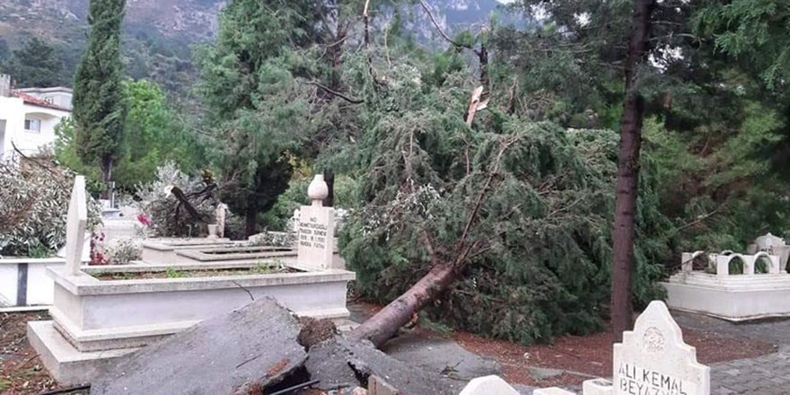 Kabristanlık yıkıldı, ağaçlar devrildi