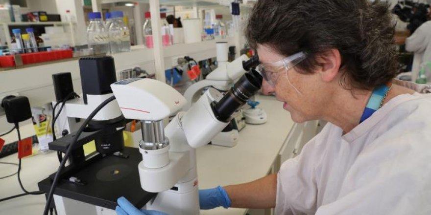 Güney COVID-19 aşılarının ilk bölümünü almaya hazırlanıyor
