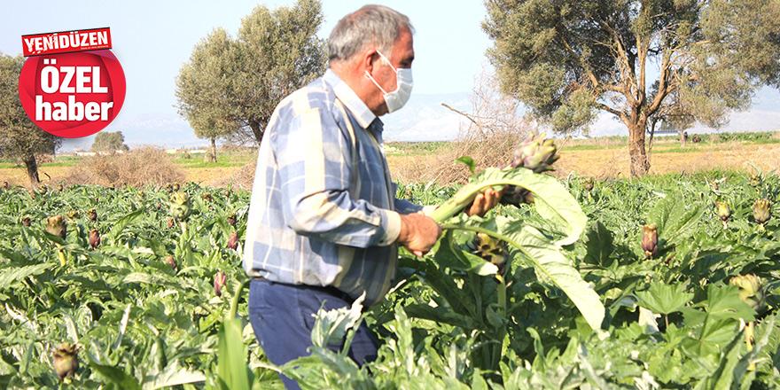 """""""İç piyasa yetersiz, eğer ürünümüzü Türkiye'ye ihraç edemezsek, işimiz çok zor"""""""