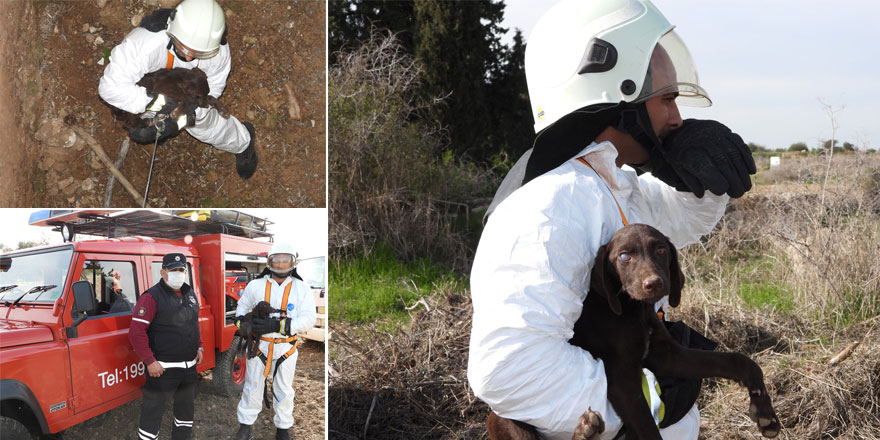 İskele'de kuyuya düşen köpek kurtarıldı