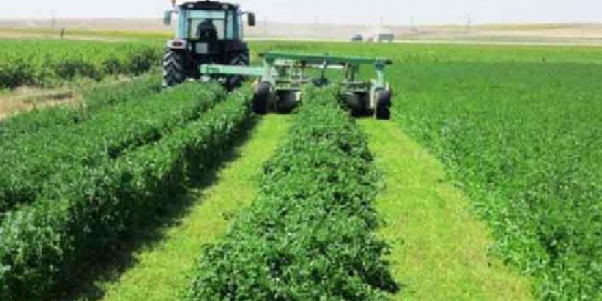 Devlet Üretme Çiftlikleri'nde yonca satışı yapılacak