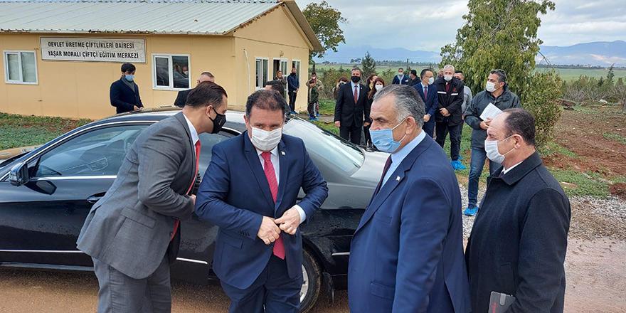 Başbakan, Tarım Bakanı ve Büyükelçi 'küçükbaş hayvan' dağıtıyor