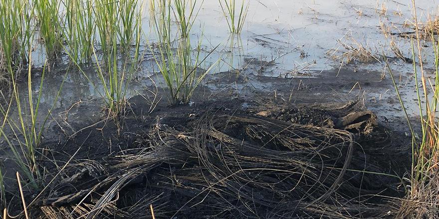 Gölete yanık lastik atıkları boşaltıldı!
