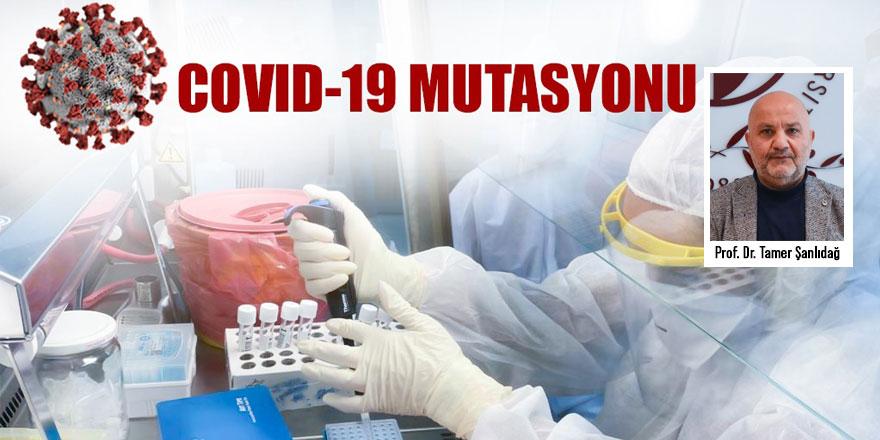 Mutasyonlu virüs vakaları, Şubat ayının ilk 10 gününde 3,5 katına çıktı