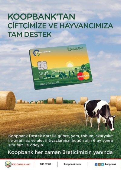 koopbank-destek-card-a.jpg